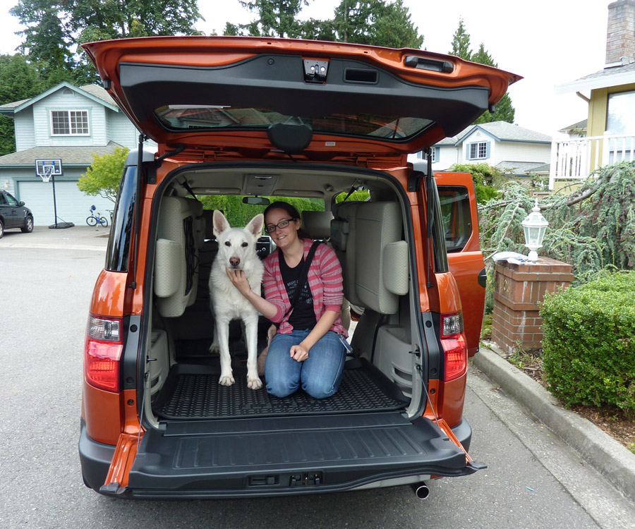Hooniverse Asks What's the Best Car for a Dog Lover